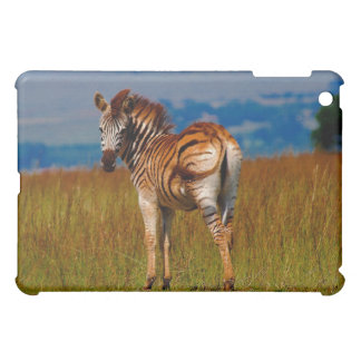 Zebra on the mountain cover for the iPad mini