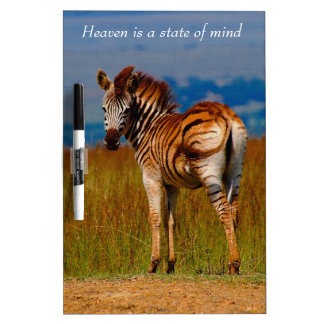 Zebra on the mountain dry erase board