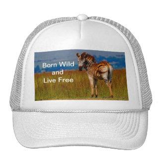 Zebra on the mountain trucker hat
