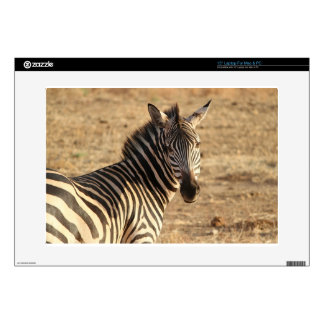 """Zebra on the Savannah Decal For 15"""" Laptop"""