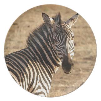 Zebra on the Savannah Dinner Plate