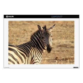 Zebra on the Savannah Laptop Skin