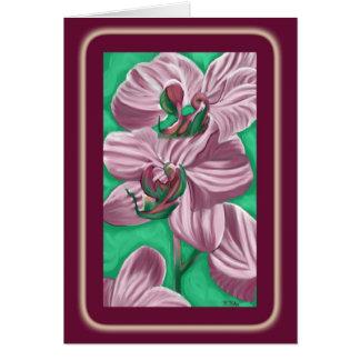 Zebra Orchids card