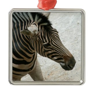 Zebra Ornament