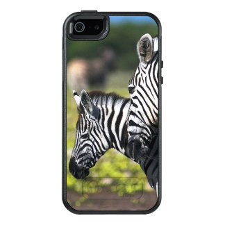 Zebra OtterBox iPhone 5/5s/SE Case