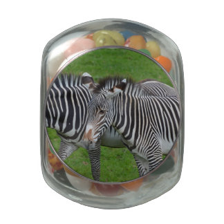 Zebra Pair Glass Candy Jar