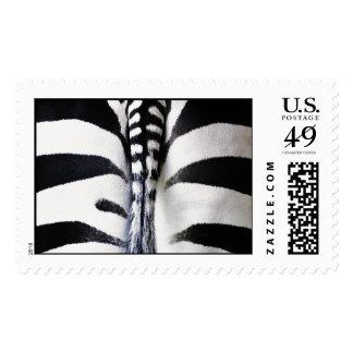 Zebra Pattern - Large Postage Stamp