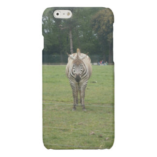 Zebra phone case