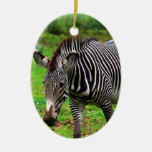 Zebra Photo Christmas Tree Ornament