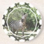 Zebra Photo Design Coasters
