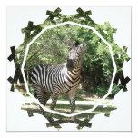 Zebra Photo Design Invitation