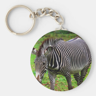 Zebra Photo Key Chain