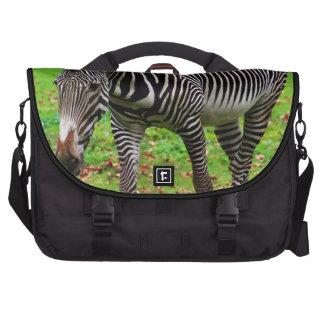 Zebra Photo Bag For Laptop
