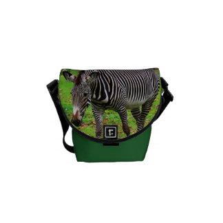 Zebra Photo Courier Bag