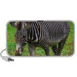 Zebra Photo Portable Speakers