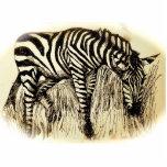 Zebra Photo Sculpture