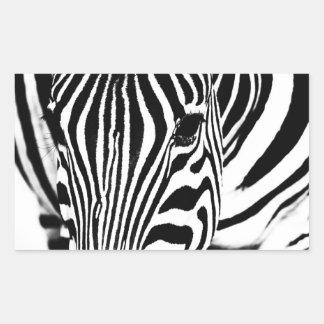 Zebra portrait black and white rectangular sticker