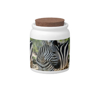 Zebra Pose Candy Jar