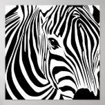 Zebra Poster