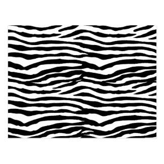 Zebra Print Pattern Postcard
