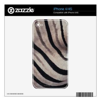Zebra print skin for the iPhone 4