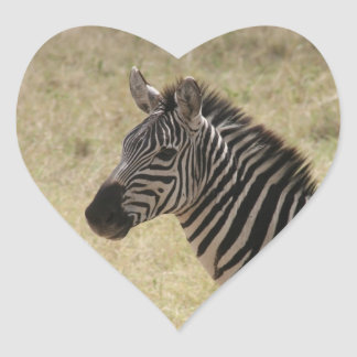 zebra profile heart sticker