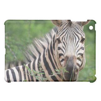 Zebra profile iPad mini covers