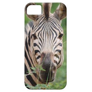 Zebra profile iPhone 5 case