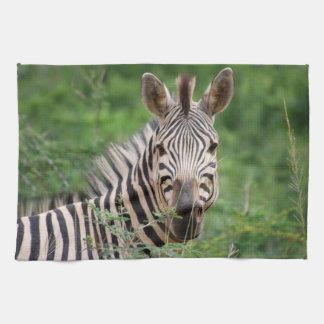 Zebra profile kitchen towel