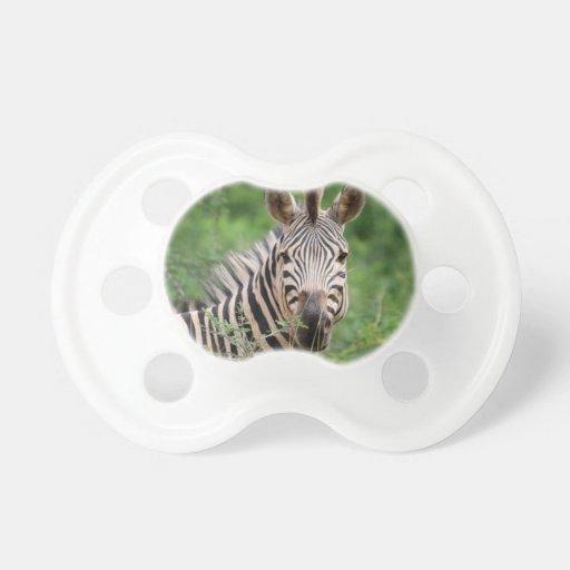 Zebra profile baby pacifier