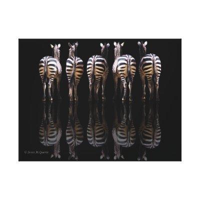 Zebra Reflections Canvas Prints