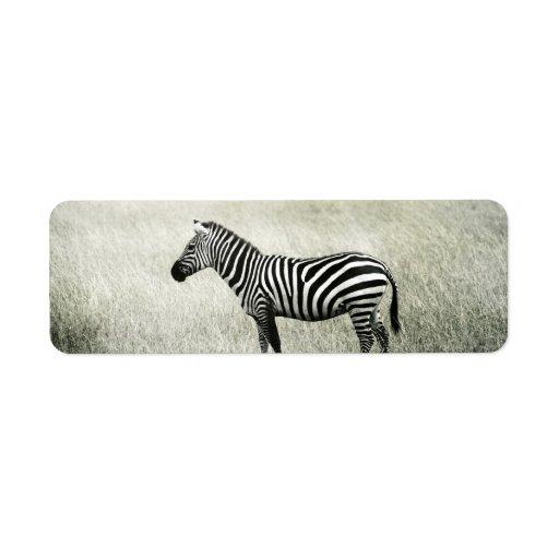 Zebra Return Address Label | Zazzle