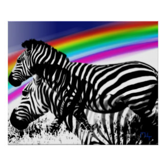 Zebra 's dream of rainbow skin poster