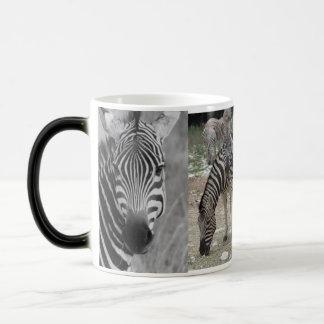 Zebra Safari Cute African Classy Stripes Magic Mug