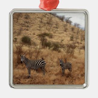 Zebra Safari Cute African Classy Stripes Metal Ornament