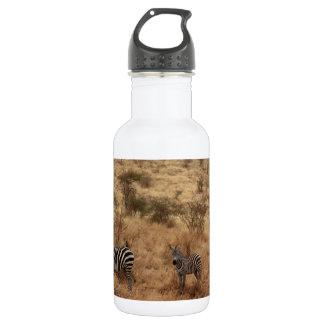 Zebra Safari Cute African Classy Stripes Water Bottle