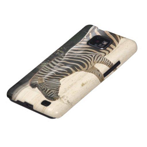 Zebra Samsung Galaxy SII Cases