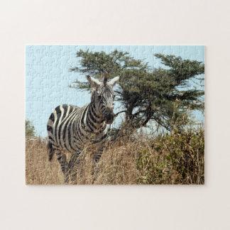 zebra scene puzzle