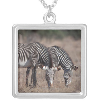 Zebra Silver Plated Necklace