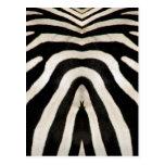Zebra skin (#2) post card