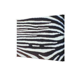 Zebra skin surface canvas print