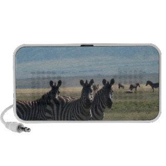 zebra notebook speakers