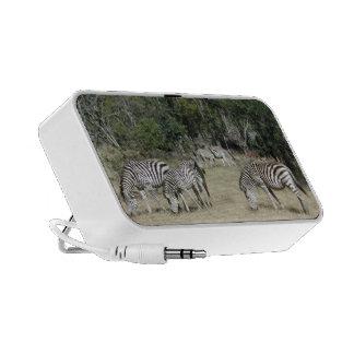 Zebra Laptop Speaker