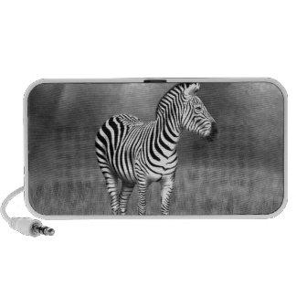 Zebra Mini Speakers