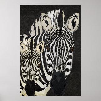 Zebra Stars Art Poster