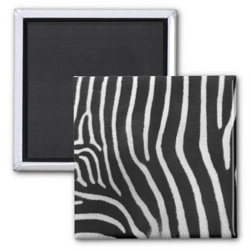 Zebra Stripe Pattern Square Magnet Magnet