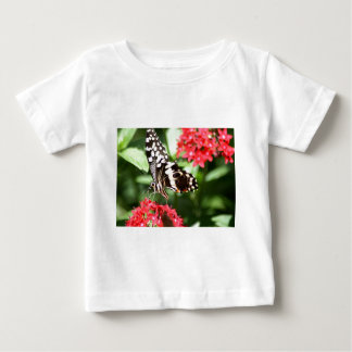 Zebra Striped Butterfly Baby T-Shirt