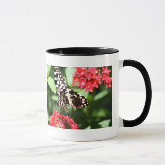 Zebra Striped Butterfly Mug