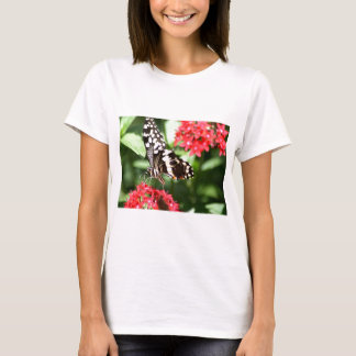 Zebra Striped Butterfly T-Shirt