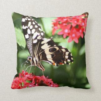 Zebra Striped Butterfly Throw Pillow